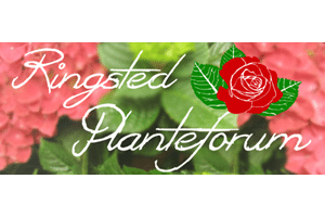 logo ringsted planteforum