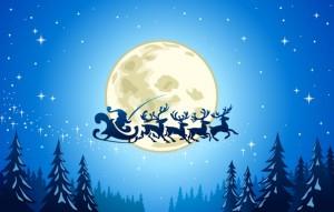 Jul i Kærehave Skov