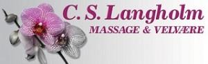 cs langholm logo