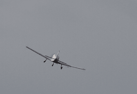 Fly forulykkede i Ringsted