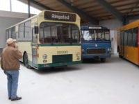Der udstilles busser produceret gennem mere end 100 år i Sporvejsmuseets nye udstillingshal. Foto: Sporvejsmuseet.