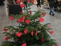Mødrehjælpen Ringsted Lokalforening: Ønsketræ