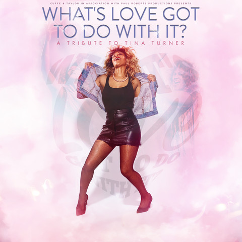 What's Love Got To Do With It? – Tina Turner Tribute
