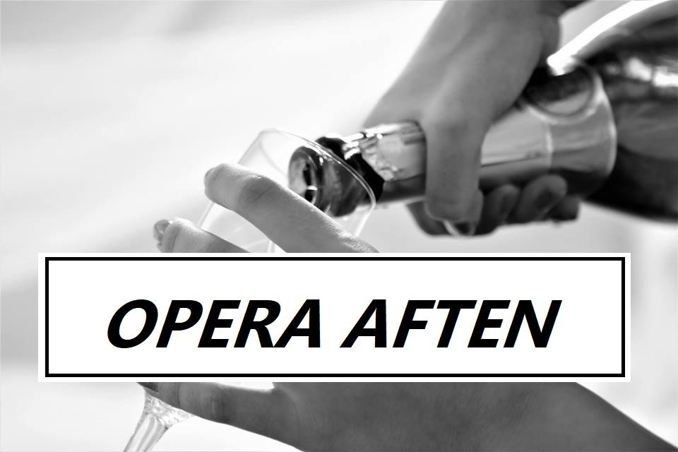 Efterårets Operaaften