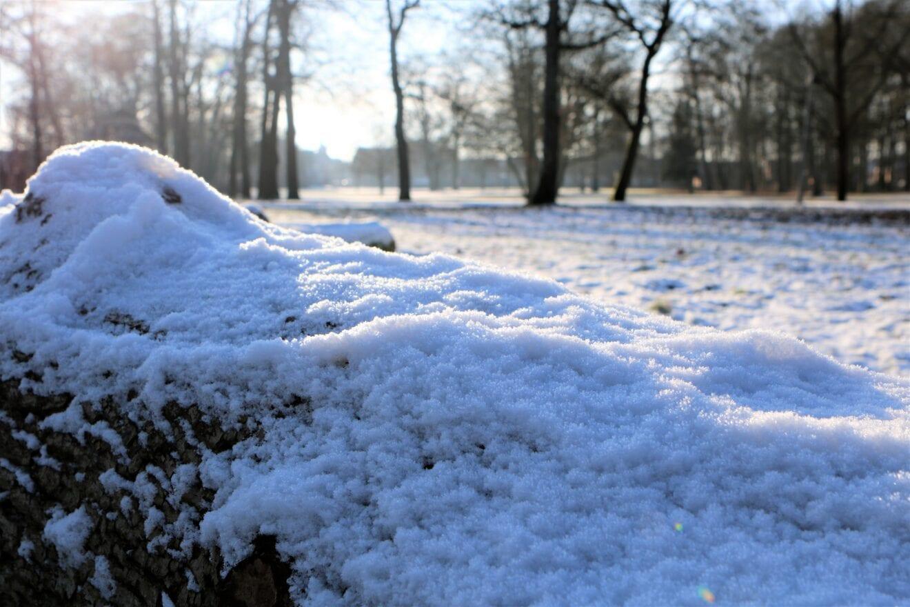 Solen strålede i sneen